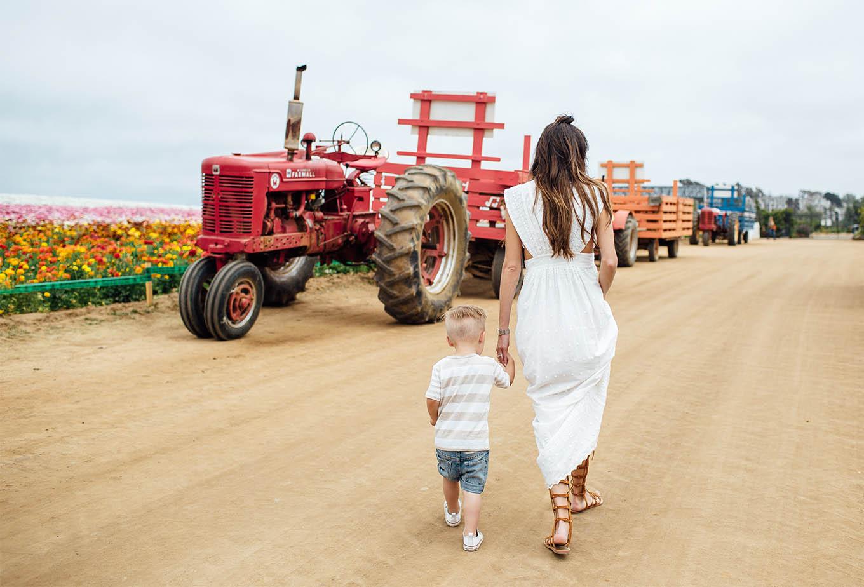 Carlsbad Flower Field Tractor