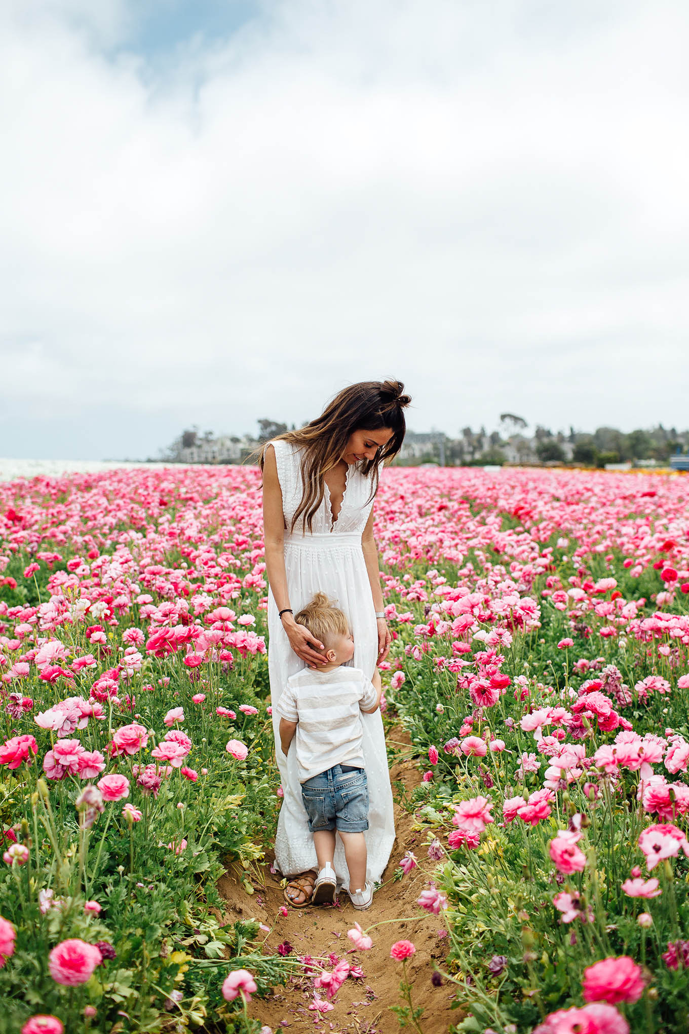 carlsbad flower fields