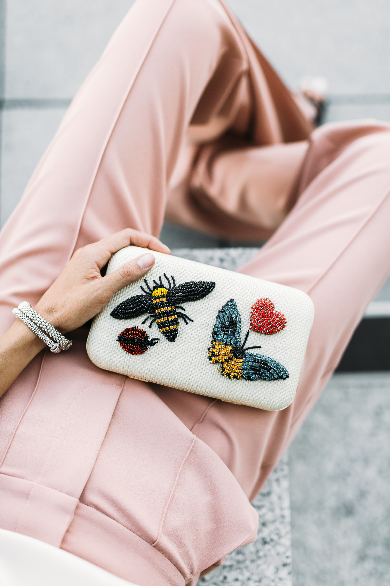 insect bag