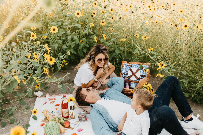 Sunflower Fields Utah