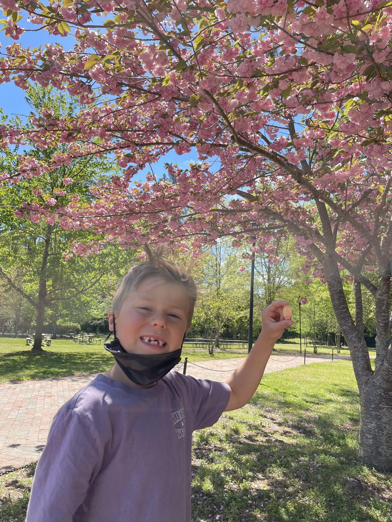 williamsburg in spring